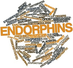 Word cloud for Endorphins