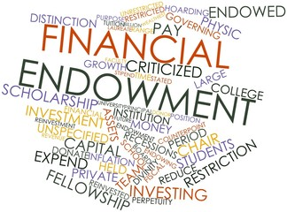 Word cloud for Financial endowment