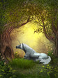 Fototapeten,einhorn,pferd,magisch,fantasy