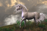 Fototapety White Unicorn Stallion