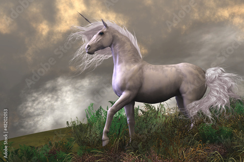 White Unicorn Stallion Plakát