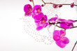 flowers of pink  orchid and beads from white pearls on a white b