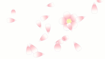 舞い桜04