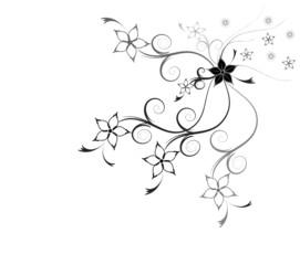 Trauer Karte schwarz weiß Hintergrund Blumen