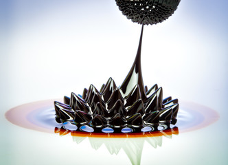 Ferrofluid flow