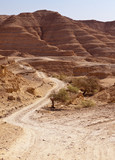 Road Through Negev Desert Hills