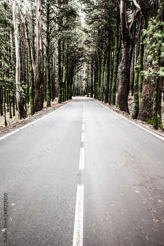 Open road on Tenerife.Road in beautiful landscape on Tenerife