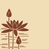 Water-lily of brown color.Vector.