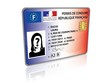 permis de conduire électronique 3D 2013