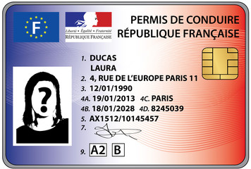 permis de conduire électronique 2013