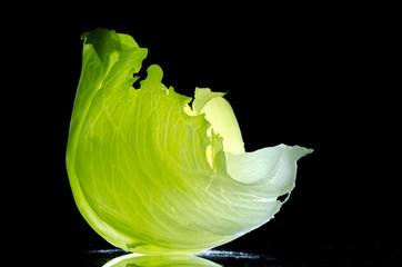 backlit iceberg lettuce