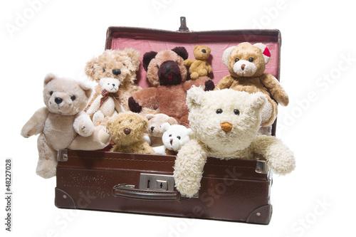Teddybären - eine Freundschaft fürs Leben