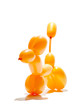 animal balloon action posed on white background