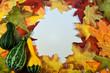 Fall Foliage Copy Space