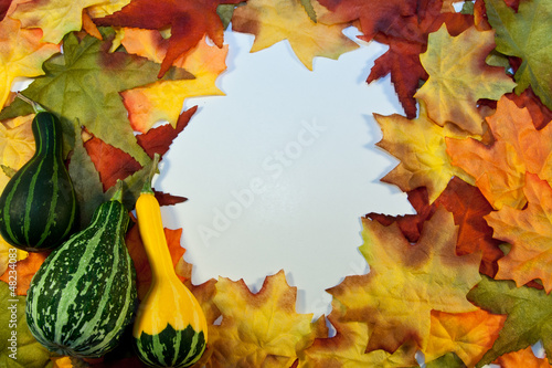 Fall Foliage Copy Space