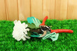 Secateurs with flower on grass on  fence background