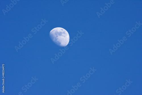 Half moon in the desert evening sky Poster