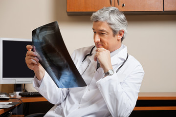 Radiologist Analyzing Shoulder X-ray