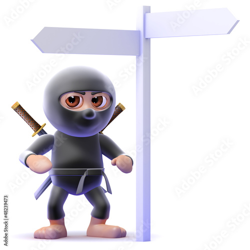 Ninja is at a signpost