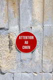 Attention au chien - Beware of Dog poster