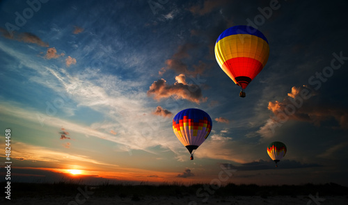canvas print picture Romance of the flight