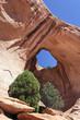 famous Bowtie Arch