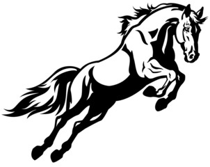 jumping horse black white