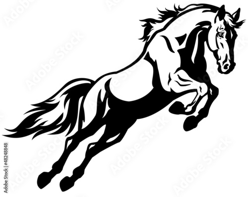 jumping horse black white