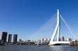 Erasmus bridge - Rotterdam - 48249017