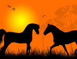 Two horses at sunset background vector illustration
