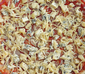 unbaked pizza with cheese, close-up