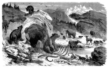 Prehistoric Scene : Mammals - Quaternary