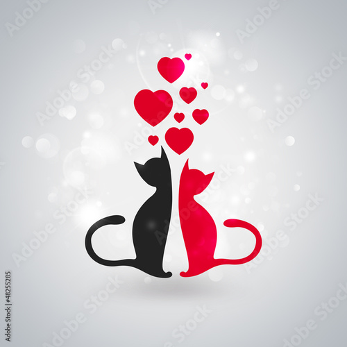 Valentine illustration. Two cats sitting together in love