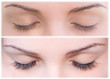 EYE AND FALSE EYELASHES - 48260238