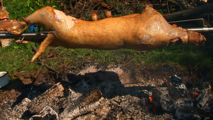 Traditional Serbian roasting of a lamb