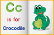 A picture of a crocodile in a book