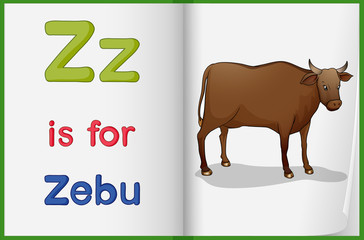 A picture of a zebu in a book