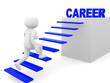 3d man climbs the ladder of career