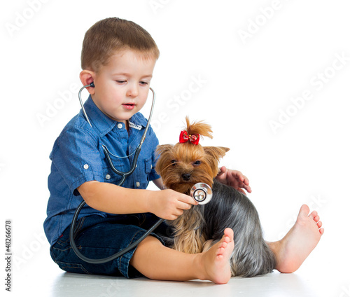 boy child examing dog puppy isolated on white background
