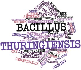 Word cloud for Bacillus thuringiensis