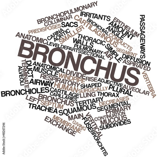 Word cloud for Bronchus