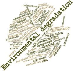 Word cloud for Environmental degradation