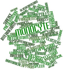 Word cloud for Monocyte