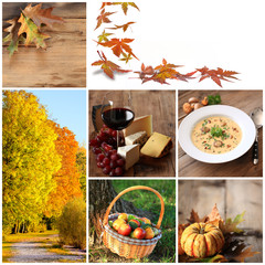 Collage Herbst
