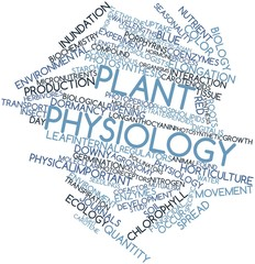 Word cloud for Plant physiology