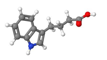 Plant hormone - Auxins - IBA - molecular model