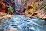 Fototapeta jasny - spokojny - Rzeka