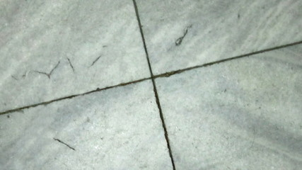 Cracks growing in marble floor