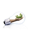 energía renovable, conceptos
