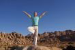 Yoga Vrkasana